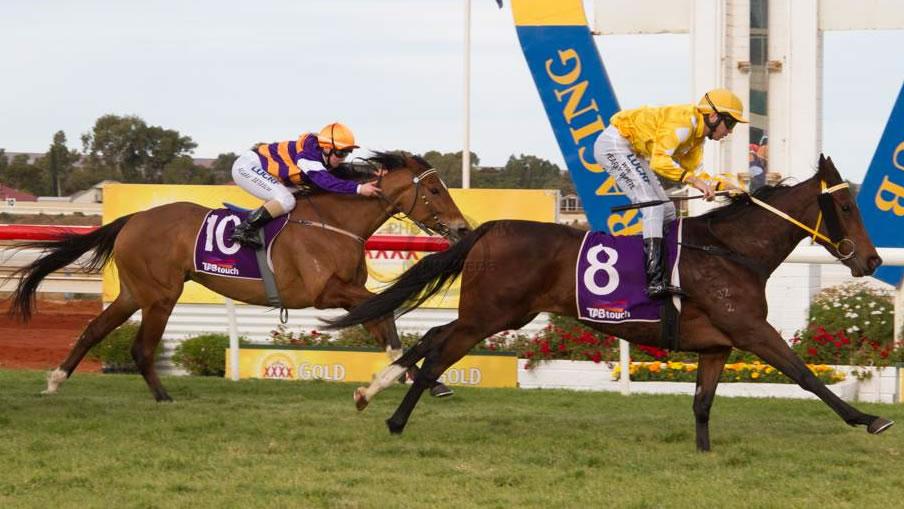 Speedy mare too good in Goldfields